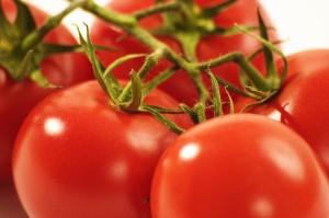 tomatoes.dreamstimefree_1594500
