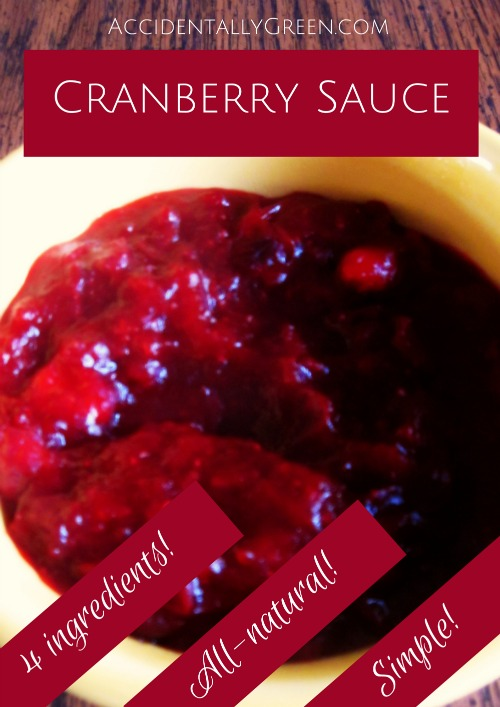 Make-Your-Own Cranberry Sauce {AccidentallyGreen.com}