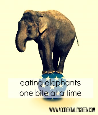 One Bite At A Time Eating Elephant