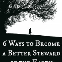 6 Ways to Become a Better Steward of the Earth