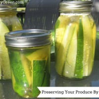 Preserving Your Produce By Pickling