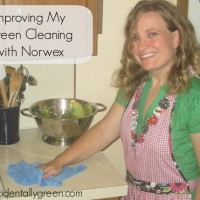 Improving My Green Cleaning with Norwex