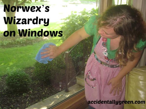 Norwex's Wizardry on Windows - Accidentally Green