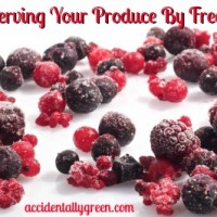 Preserving Your Produce By Freezing