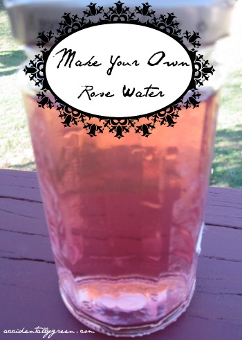 Make Your Own Rose Water {Accidentally Green}