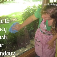 How to Safely Wash Your Windows
