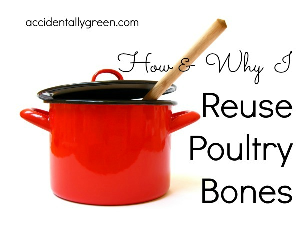 How & Why I Reuse Poultry Bones {Accidentally Green}