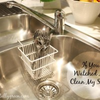 If You Watched Me Clean My Sinks