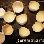 3 Ways to Reuse Eggshells