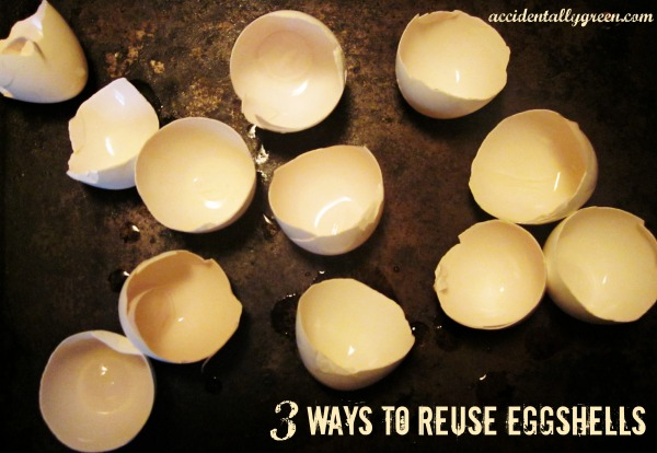 3 Ways to Recycle Eggshells {Accidentally Green}