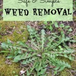 Safe and Simple Weed Removal