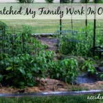 If You Watched My Family Work In Our Garden