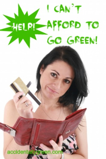 Help! I Can't Afford to Go Green! {accidentallygreen.com}