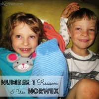 The Number 1 Reason I Use Norwex