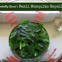 Repelling Mosquitoes with Basil