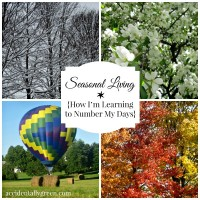 Seasonal Living {How I'm Learning to Number My Days}