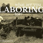 What Are You Laboring for? {accidentallygreen.com}