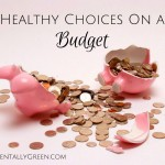Healthy Choices On a Budget {AccidentallyGreen.com}