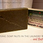 Using Soap Nuts in the Laundry Room ... and Bathroom
