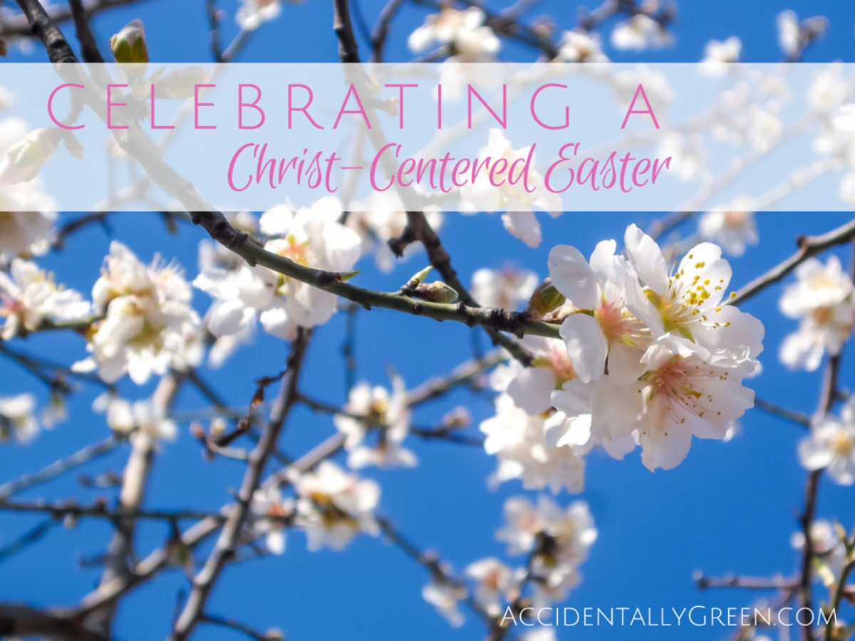As a parent, I don't want my kids to get caught up in a frenzy of baskets and bonnets. I don't want them to miss a Christ-centered Easter. So each year we've tried to intentionally plan our Holy Week activities. Here's what we're planning this year: