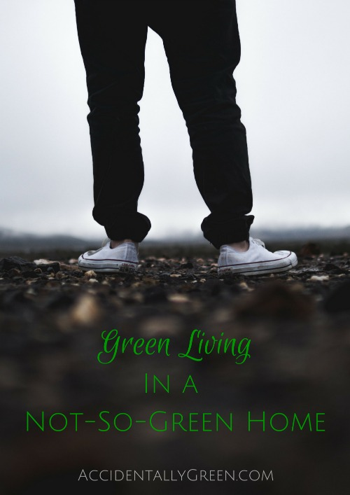Is it possible to embrace green living in a not-so-green home? It can be tricky ... especially when not everyone in your home welcomes green living.