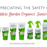 Appreciating the Safety of Goddess Garden Organics' Sunscreen {Review & Giveaway}