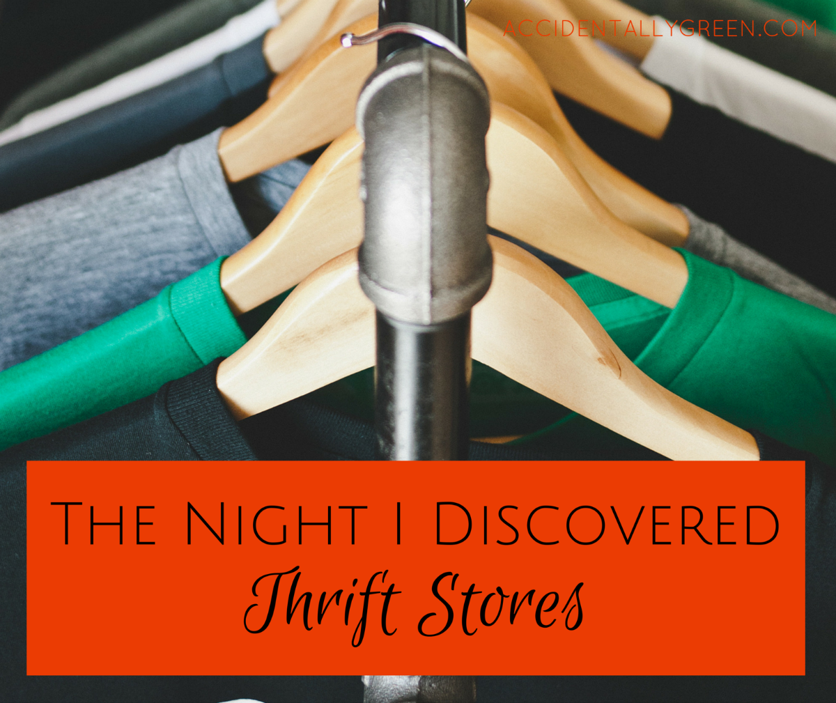 After a lifetime of bargain shopping without thrift stores, my shopping changed once I tried thrift stores. I appreciate how it's affordable to repurpose quality clothing!