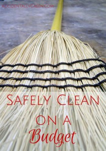 Safely Clean on a Budget