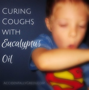 Curing Coughs with Eucalyptus Oil