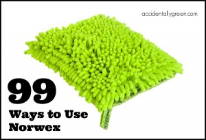 99 Ways to Use Norwex