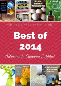 Best Homemade Cleaning Supplies of 2014